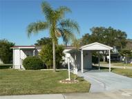 95 Wood Owl Avenue Ellenton FL, 34222