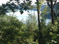 77-Lot Paradise Alley Russell Springs KY, 42642