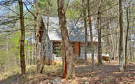607 Bushy Head Road Lot 22,24 Cherry Log GA, 30522