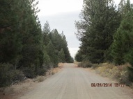 Lot 1500 Packsaddle Circle Beatty OR, 97621