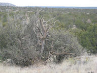 Lot 14 Loma Parda Road Mountainair NM, 87036
