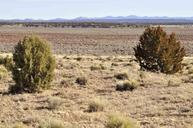 Lot 35 River Meadows Ranch Concho AZ, 85924