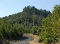 Turkey Run Rd 10 Creswell OR, 97426