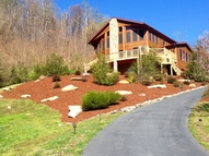 384 Serenity Mountain Mars Hill NC, 28754