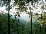 0 Azalea Ridge Road Lot 25 Tracy City TN, 37387