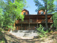 19144 Narrows Trail Hillman MI, 49746