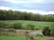 Lot 2 Bodle Road Wyoming PA, 18644