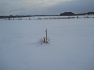 Lot 28 Whispering Pines St Prairie Farm WI, 54762