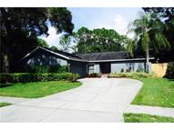 14017 Middleton Way Tampa FL, 33624