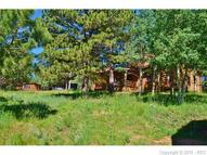 152 County 511 Road Divide CO, 80814