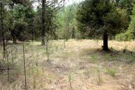 Tbd Turner Lake Rd. Tonasket WA, 98855