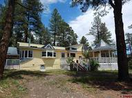 1029 County Road 335 Pagosa Springs CO, 81147