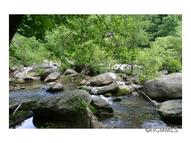 Lot 5 Rocky View Drive 5 Chimney Rock NC, 28720