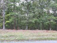 0 Lot 16a Mt. Airy Road Lynch Station VA, 24571
