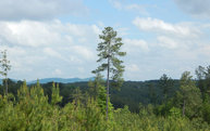 Lot 2 Ridgeline Estates Lot 2 Ducktown TN, 37326