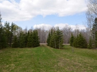 W9081 State Rd 86 Tomahawk WI, 54487