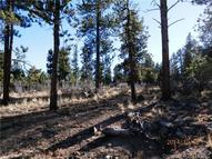 30644 Buck Brush Bend Buena Vista CO, 81211