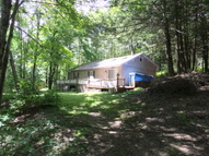 207 Barney Hollow Road Downsville NY, 13755