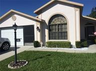 9819 Conservation Drive New Port Richey FL, 34655