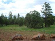 13d N Mountain Creek Trl Lakeside AZ, 85929