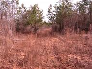Tract B Country Pond Road Rowesville SC, 29133