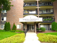 1 North Chestnut Avenue 2h Arlington Heights IL, 60005