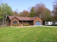 1045 N Lakeshore Port Sanilac MI, 48469