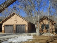 106 Merrill Lane Buena Vista CO, 81211