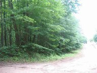 0 28 Road Parcel B Harrietta MI, 49638