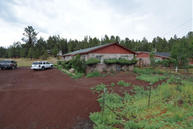 5385 Sj Diamond Rd 4 Flagstaff AZ, 86005