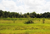 Lot 5 Meadow Lane Fitzgerald GA, 31750