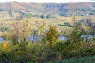 Tract 1 Trace Creek Gainesboro TN, 38562