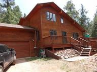 380 Ponderosa Lane Woodland Park CO, 80863