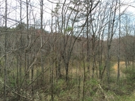 Lot 13 Cool Waters Mineral Bluff GA, 30559