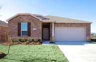 Larkspur Little Elm TX, 75068