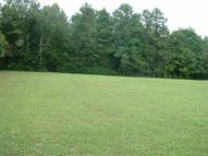 12 Sweetwater Ln Spring City TN, 37381