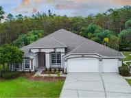 14812 Via Winghurst Court Orlando FL, 32828