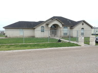 5402 El Bosque Dr Edinburg TX, 78542