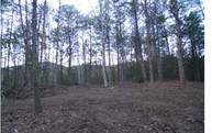Lot 403 Beaver Cove Rd Lot 403 Turtletown TN, 37391