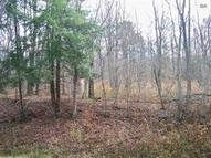 0 Jackson Hollow Road Lot 3 Van Etten NY, 14889