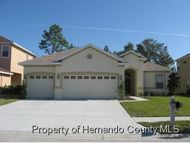 4697 Birchfield Loop Spring Hill FL, 34609