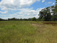 24 Acres Dominey Rd Jewett TX, 75846