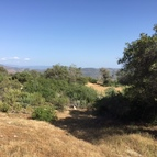 37.88 Ac Flying O Ranch Rd O Neals CA, 93645