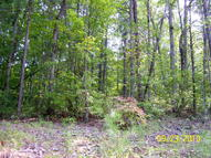 Address Not Disclosed Ellijay GA, 30540