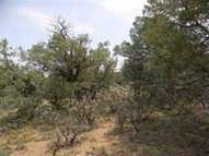 Lot 15, Block 6, Pinon Ridge Rutheron NM, 87551
