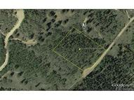 517 Old Squaw Rd Como CO, 80432