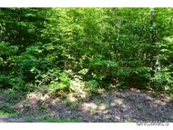 Lot 8 Fern Cove Lane Gerton NC, 28735