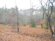 Lot 46 Broad River Scenic Dr Tignall GA, 30668