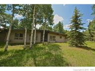 218 Worley Road Divide CO, 80814