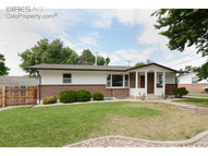 520 6th St Windsor CO, 80550